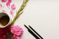 Live peonies on a white letter. Live peonies and pencils on a white background Royalty Free Stock Photos