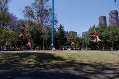 Voladores de Papantla 3 stock photos