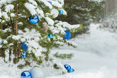 Live pine tree under snow decorated with Christmas