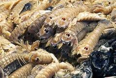 Live prawns market Stock Image