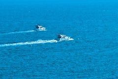 Live Sea fotos de stock royalty free