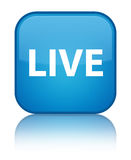 Live special cyan blue square button Royalty Free Stock Image
