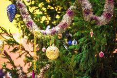 Live spruce decorated with Christmas toys, garlands and balls outdoor, new year. Concept stock images