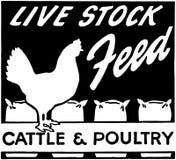 Live Stock Feed Royalty Free Stock Photos