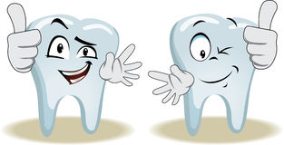 Live tooth with face, arms and eyes. For your medical and health design. It shows a thumbs-up. Vector illustration Stock Photo