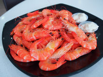 Live Vannamei Shrimp cuit photographie stock