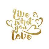 Live what you love  hand written lettering. Stock Images