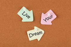 Live Your Dream. Written on color reminder notes with pin on cork board. Business concept royalty free stock photo