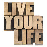 Live your life in wood type. Live your life phrase - isolated text in vintage letterpress wood type printing blocks Stock Photography