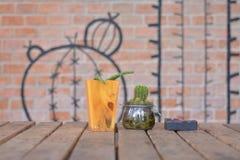 Livekaktus mit Kaktusmalerei Stockfoto