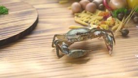Livekrabbe, die auf Holztisch auf Lebensmittelinhaltsstoffhintergrund kriecht Krabbe auf Tabelle für das Kochen von Meeresfrüchte stock video footage
