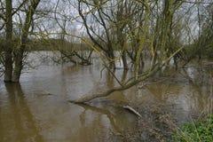 Livelli dell'alta marea sul fiume Severn Fotografie Stock
