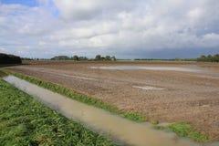Livello dell'alta marea alla campagna nel villaggio Oudenhoorn nella caduta Fotografia Stock Libera da Diritti