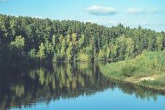 livello dell'alta marea in fiume Gauja, vicino alla città di Valmiera in Lettonia S Immagini Stock Libere da Diritti