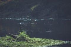 livello dell'alta marea in fiume Gauja, vicino alla città di Valmiera in Lettonia S Fotografia Stock Libera da Diritti