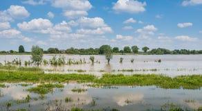 Livello dell'alta marea nei fiumi olandesi Fotografia Stock