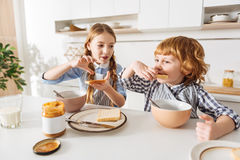 Lively cute girl making a sandwich for her brother. Just like mom. Charming nice young lady spreading some peanut butter on a piece of bread while her sibling royalty free stock photos