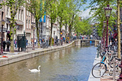 Lively street in the heart of Amsterdam, Netharlands Stock Images