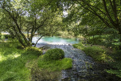 Livenza Springs Royalty Free Stock Photo