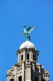 The Liver Bird, Liverpool. Royalty Free Stock Images