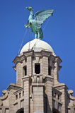 Liver Bird Perched on the Royal Liver Building. A Liver Bird statue perched ontop of the Royal Liver Building in Liverpool royalty free stock photos