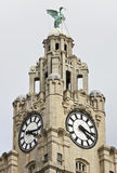 A Liver Bird on the Royal Liver Building Stock Images