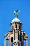 The Liver Bird and Tower, Liverpool. Royalty Free Stock Photography