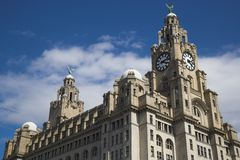 Liver Building. In Liverpool UK Royalty Free Stock Images