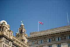 Liver Building Stock Image
