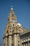 Liver Building. Liverpool with copy space stock image