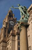 The Liver Building. In Liverpool on a sunny day royalty free stock photo