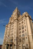 The Liver Building. In Liverpool on a sunny day stock images