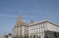 Liver Building and Canada House Stock Images