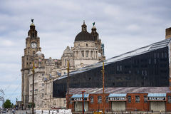 The Liver Building and Customs House from the Albert Dock in Liverpool in Merseyside in England Royalty Free Stock Photography