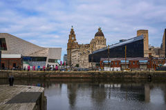 The Liver Building and Customs House from the Albert Dock in Liverpool in Merseyside in England Royalty Free Stock Photo