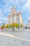 Liver Building Royalty Free Stock Photos