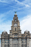 Liver building Liverpool. The clock tower in the Liver Building Liverpool royalty free stock image