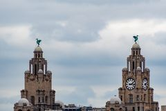 The Liver building Liverpool. The Liver building as viewed from the banks of the river Mersey royalty free stock image