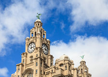 The Liver Building Royalty Free Stock Photos