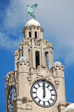 Liver Building Tower Royalty Free Stock Photo