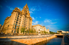 Liver building in warm sunlight with blue sky royalty free stock image