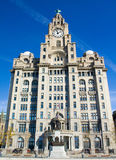 Liver buildings Royalty Free Stock Image