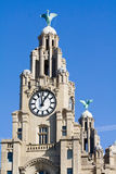 Liver buildings. The liver buildings in liverpool on the water front Royalty Free Stock Photos