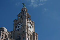 Liver Buildings Stock Photo