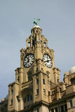 Liver Buildings. Historic Liver Buildings in Liverpool royalty free stock image