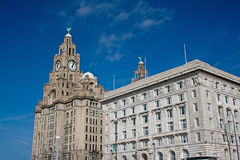 Liver buildings and Cunard building Stock Images