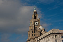 Liver Buildings side view Stock Photos