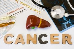 Liver cancer concept photo. Anatomical shape of liver lies near letters composing word cancer surrounded by set of tests, analysis stock images