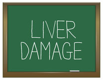 Liver damage concept. Stock Photos