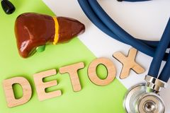 Liver detox concept photo. Word detox of volumetric letters is near 3D liver model and medical stethoscope. Medical diet program. For detoxification and cleanse stock photos